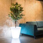 LED kvetináč OVO 1